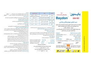 Baydon